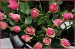 LAranjament-floral-CamCom-b