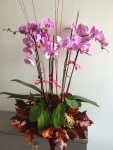 Aranjamente-florale-sept-2012-013