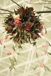 Palas-copac-protea-leucandendron-018