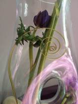 Flori noiembrie 028