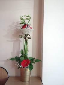 Flori noiembrie 042