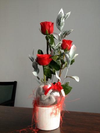 Valentine 2013 009