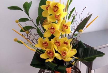 Aranjament-orhidee-a