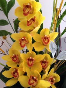 Aranjament-orhidee-b